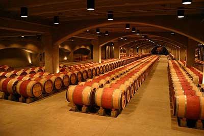 Sản xuất rượu